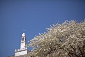 Steeple at Drew University. Photo by Bill Cardoni.
